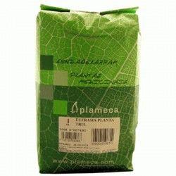 Eufrasia Planta molida