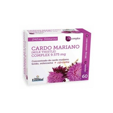 Cardo Mariano Complex