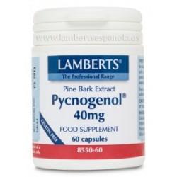 Pycnogenol (Extracto de corteza de pino marítimo) 60 capsulas