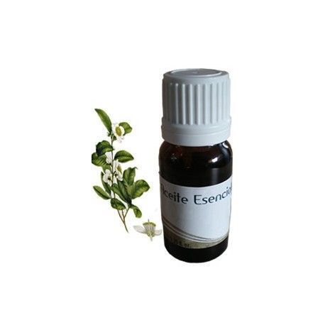 Aceite esencial de ÁRBOL de TÉ, 15ml.