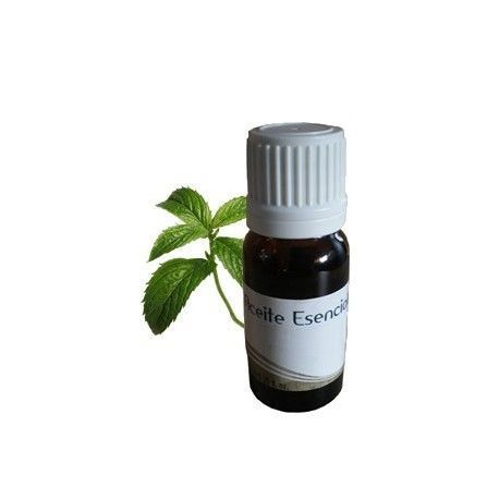 Aceite Esencial de MENTA 10ml.