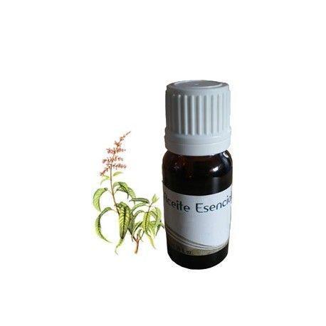Aceite esencial de EUCALIPTO 10ml.