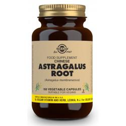 Astrágalus Chino Raíz (Astragalus membranaceus) - 100 Cáps vegetales