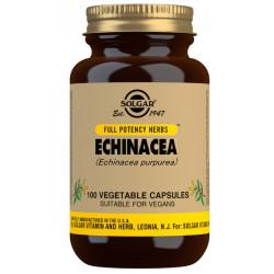Equinácea (Echinacea purpurea) -100 cáps Solgar