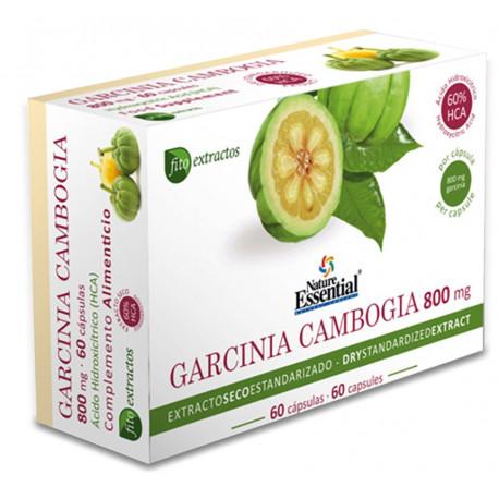 Garcinia cambogia (extracto seco) 60% 60caps