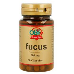 Fucus (Fucus vesiculosus) 500 mg.