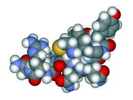 L-arginina (aminoácido)