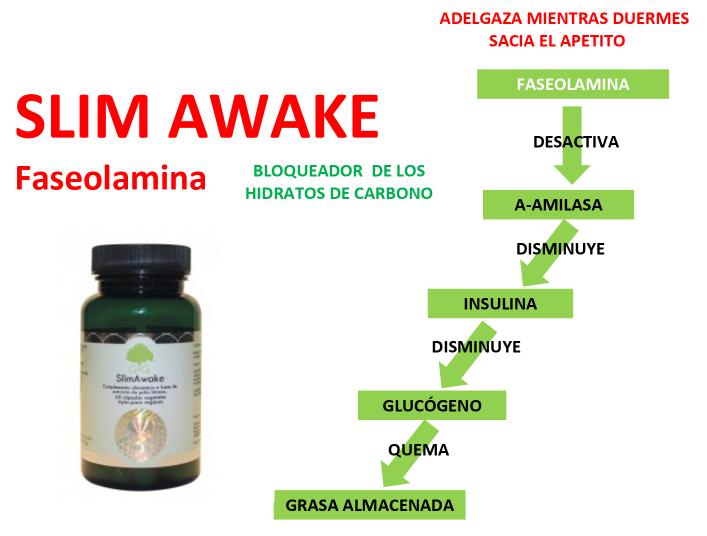 SlimAwake para adelgazar